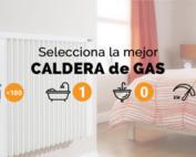 Selector de Calderas de gas